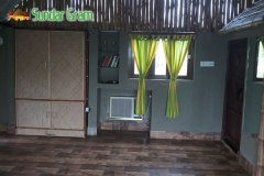 room-dotara-inside
