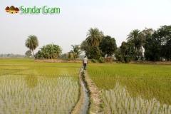sundargram-village-walk