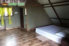 room-dotara