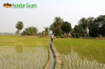 Village Walks at Sundar Gram